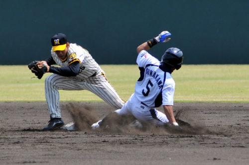 日本プロスポーツ専門学校硬式野球部